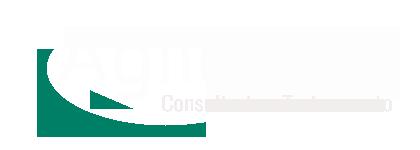 logo-agilenow-white